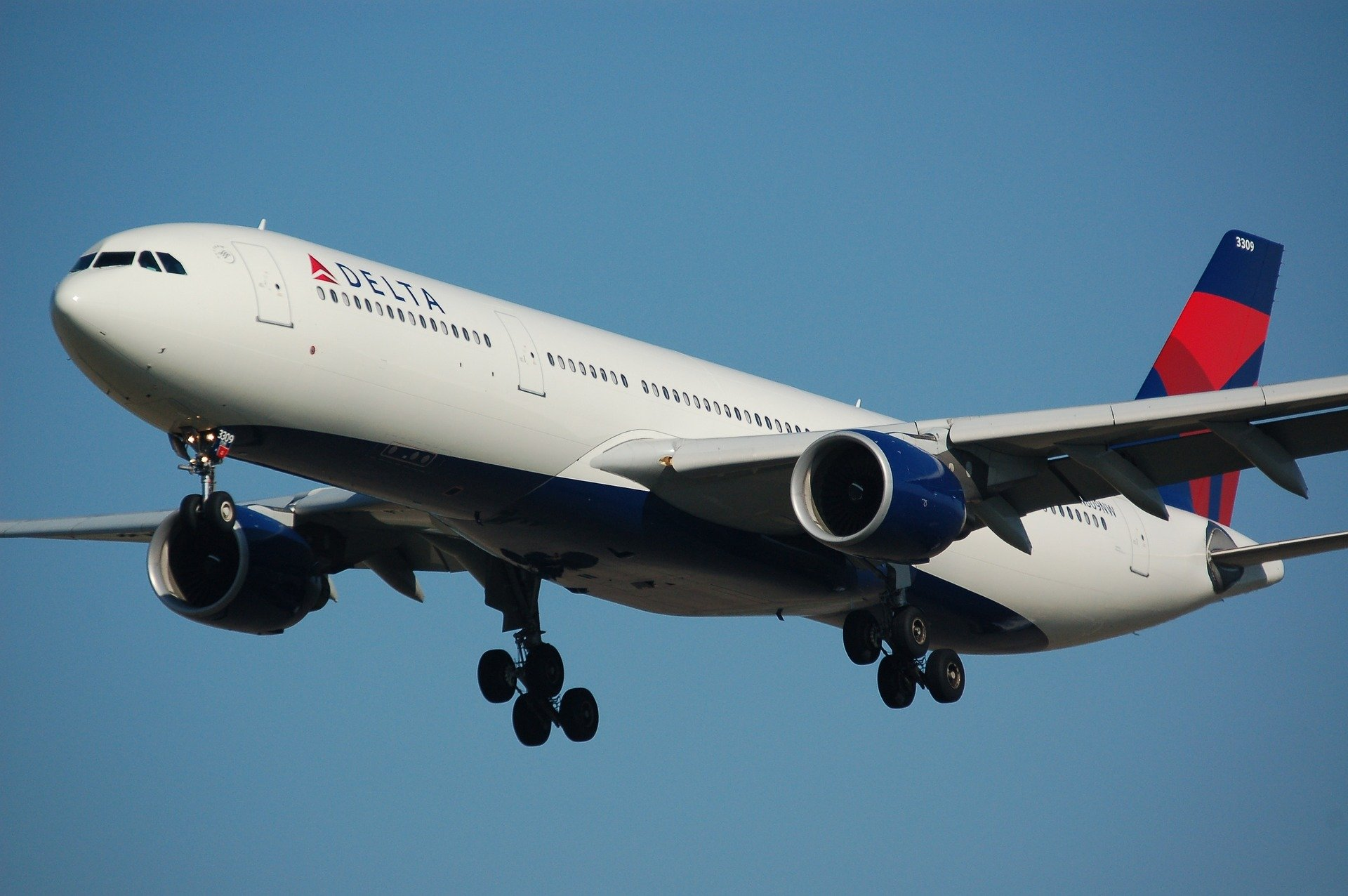 Delta. A Little Perspective From Economy Comfort.